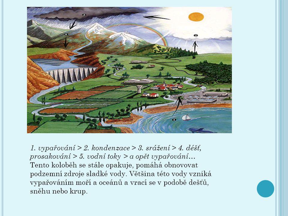 Ú KOLY : 1) fotografové - krajina 2) negativní vlivy po cestě ( nafotit nebo popsat) 3) pozitivní vlivy po cestě) nafotit nebo popsat) 4) názvy stromů, rostlin, plodin po cestě 5) zvířata, které zde žijí a potkáme po trase 6) zpracování mapy 7) výtvory člověka po trase 8) slohová práce o vycházce a projektu 9) báseň o vodě 10) namaluj Červenou studánku skupiny