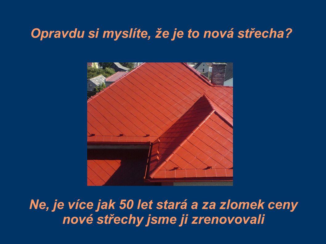 Opravdu si myslíte, že je to nová střecha? Ne, je více jak 50 let stará a za zlomek ceny nové střechy jsme ji zrenovovali