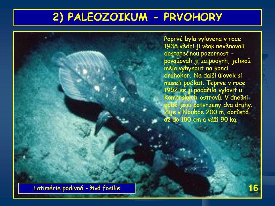 2) PALEOZOIKUM - PRVOHORY Latimérie podivná - živá fosílie Poprvé byla vylovena v roce 1938,vědci ji však nevěnovali dostatečnou pozornost - považoval