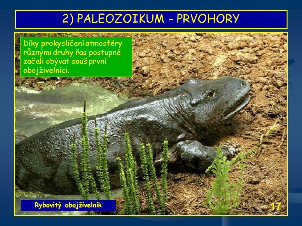 2) PALEOZOIKUM - PRVOHORY Rybovitý obojživelník 17 Díky prokysličení atmosféry různými druhy řas postupně začali obývat souš první obojživelníci.