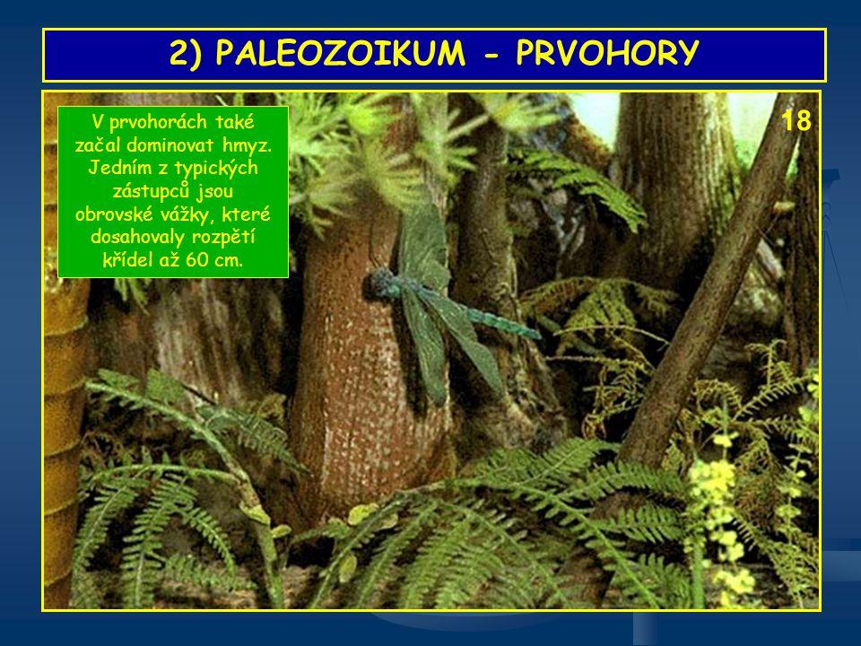 2) PALEOZOIKUM - PRVOHORY V prvohorách také začal dominovat hmyz. Jedním z typických zástupců jsou obrovské vážky, které dosahovaly rozpětí křídel až