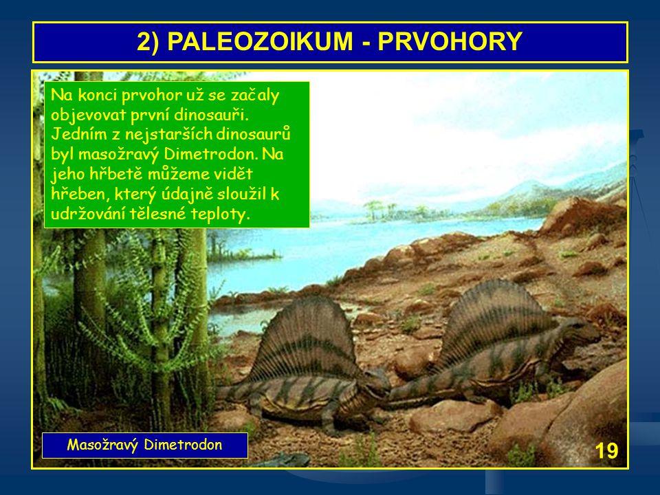 2) PALEOZOIKUM - PRVOHORY Masožravý Dimetrodon 19 Na konci prvohor už se začaly objevovat první dinosauři. Jedním z nejstarších dinosaurů byl masožrav