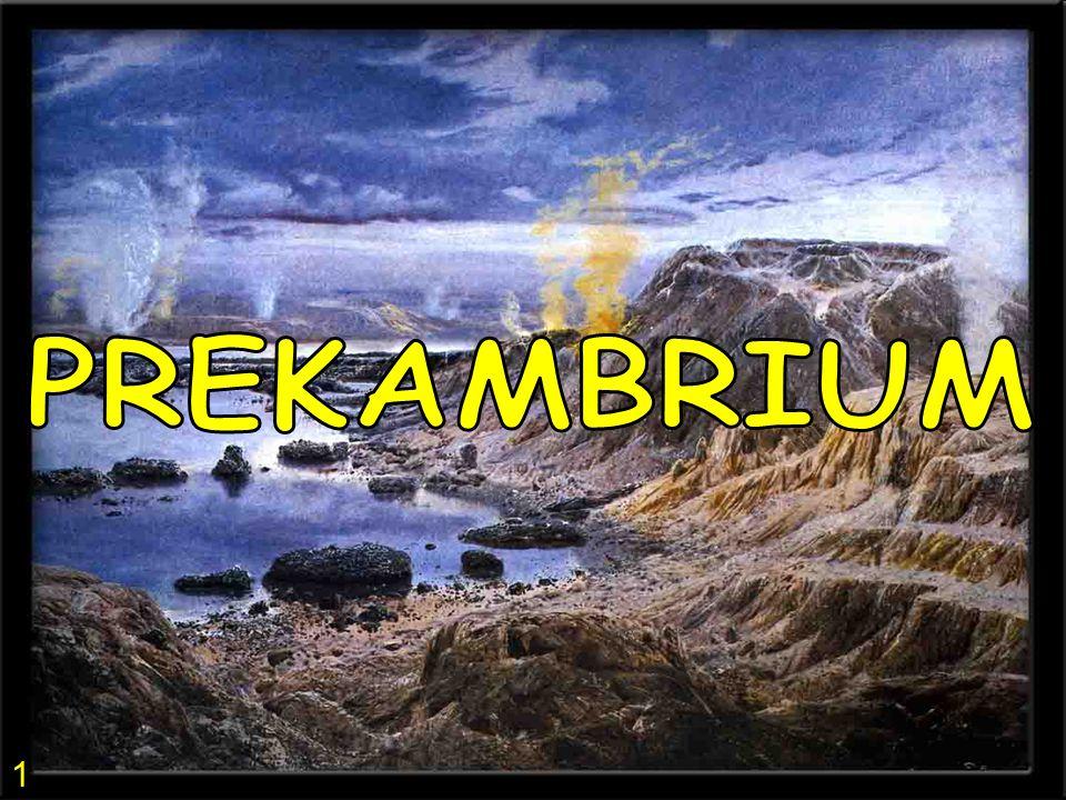 1)PREKAMBRIUM - PRAHORY A STAROHORY • po uplynutí 1 miliardy let od vzniku Země se objevují první živé organismy • život vzniká nejprve v mořích, protože voda tvořila ochrannou vrstvu před kosmickým zářením • nejprve se objevují organismy jednobuněčné, ke konci prekambria i vícebuněčné - sinice a bakterie jednobuněčné organismy 2 3