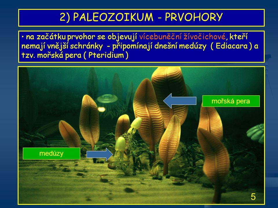 2) PALEOZOIKUM - PRVOHORY • na začátku prvohor se objevují vícebuněční žívočichové, kteří nemají vnější schránky - připomínají dnešní medúzy ( Ediacar
