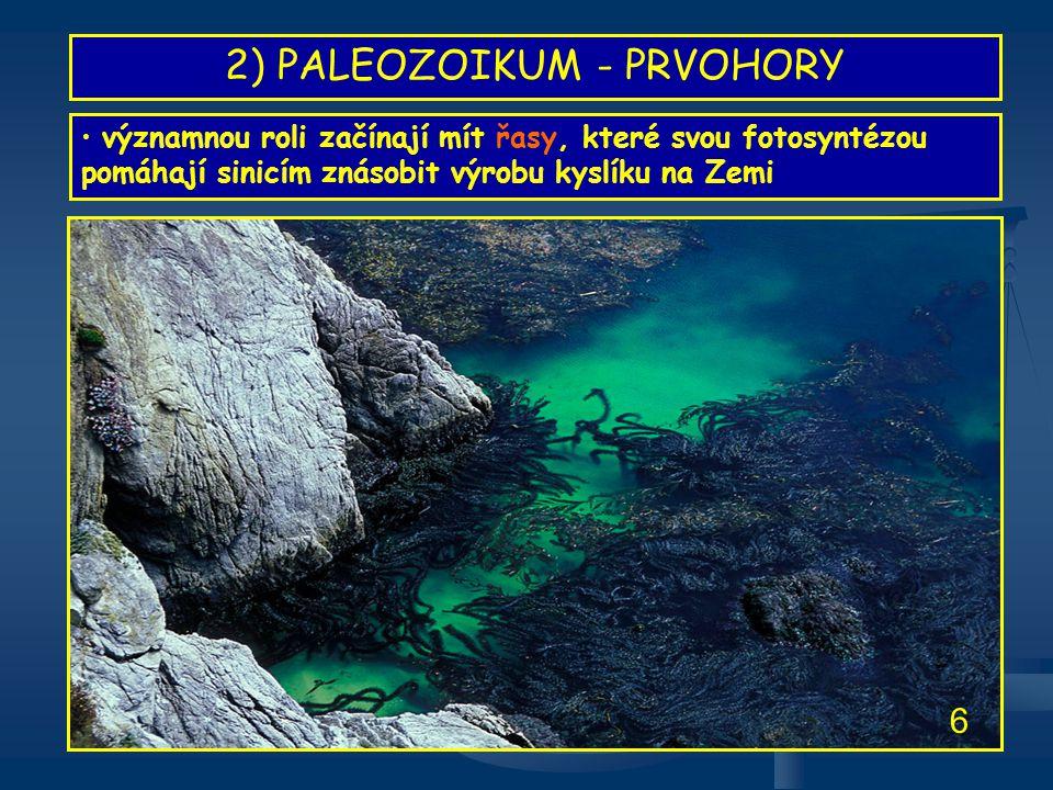 2) PALEOZOIKUM - PRVOHORY • díky prokysličení zemské atmosféry byl umožněn rozmach mnohobuněčných organismů - trilobitů, hlavonožců, měkkýšů, ramenonožců, mechovek • těla živočichů byla chráněna krunýři, lasturami a štíty TRILOBIT • typický členovec prvohor • doposud popsáno na 15 000 druhů • zastoupen i u nás ( J.