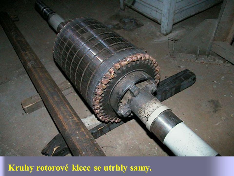 Celkový pohled na vyžíhaný rotor