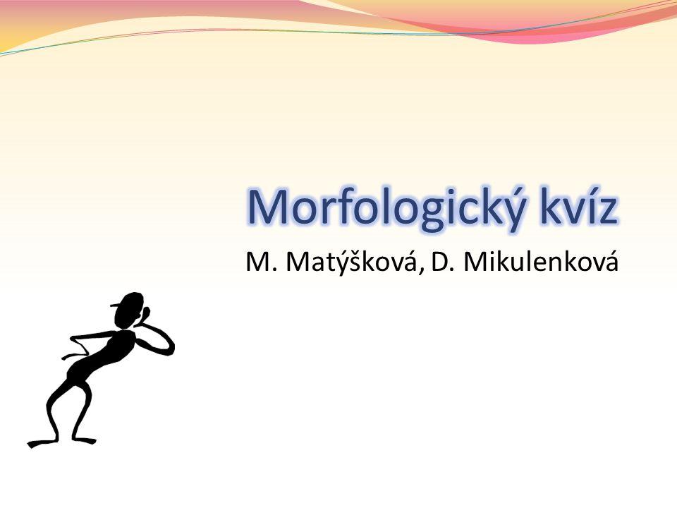 M. Matýšková, D. Mikulenková