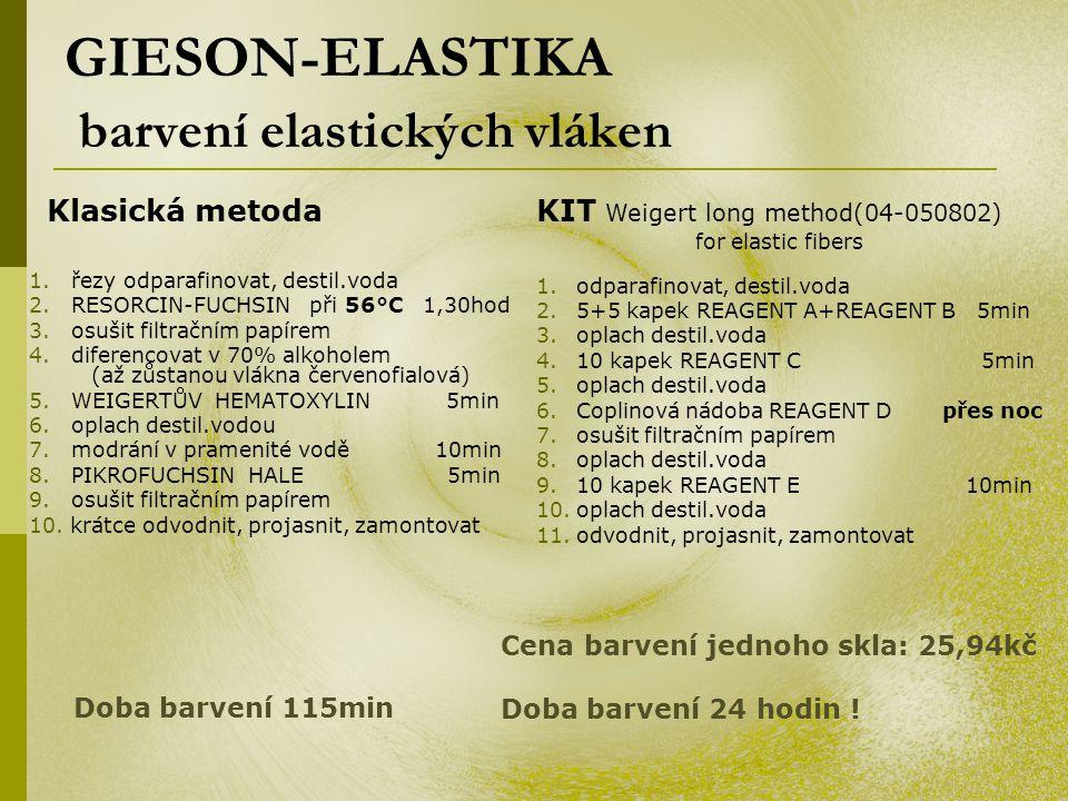 GIESON-ELASTIKA barvení elastických vláken 1.řezy odparafinovat, destil.voda 2.