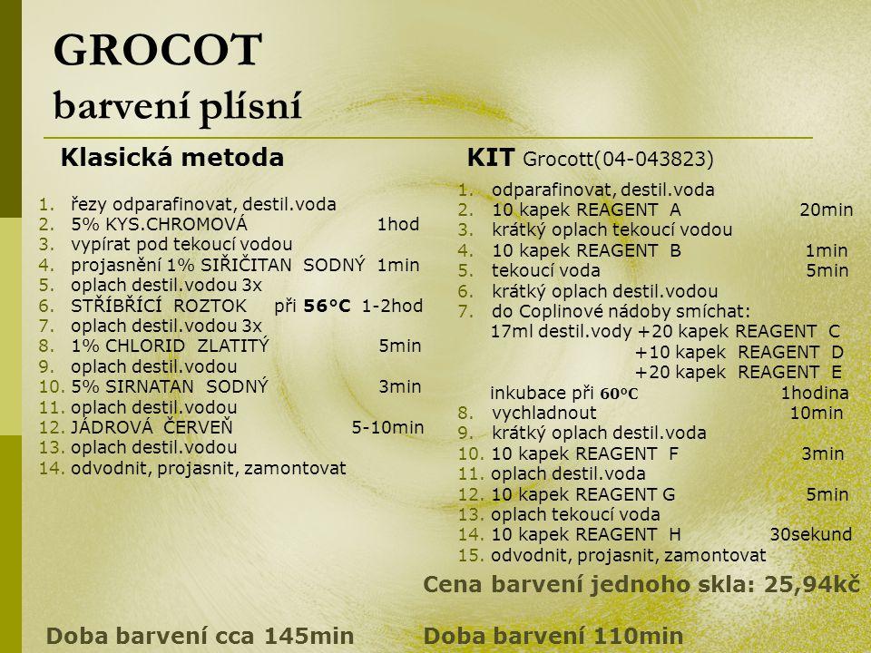 GROCOT barvení plísní Klasická metodaKIT Grocott(04-043823) 1. odparafinovat, destil.voda 2. 10 kapek REAGENT A 20min 3. krátký oplach tekoucí vodou 4