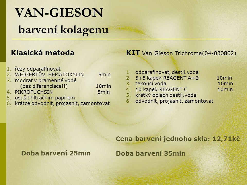 VAN-GIESON barvení kolagenu 1. řezy odparafinovat 2. WEIGERTŮV HEMATOXYLIN 5min 3. modrat v pramenité vodě (bez diferenciace!!) 10min 4. PIKROFUCHSIN