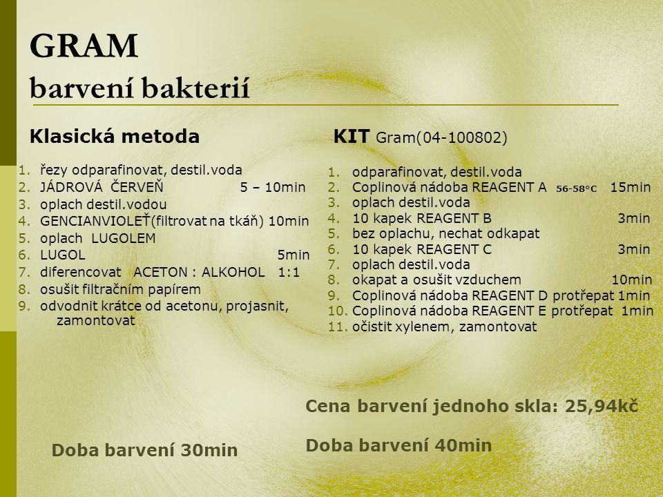 GRAM barvení bakterií 1. řezy odparafinovat, destil.voda 2. JÁDROVÁ ČERVEŇ 5 – 10min 3. oplach destil.vodou 4. GENCIANVIOLEŤ(filtrovat na tkáň) 10min