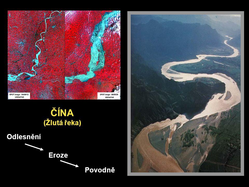 ČÍNA (Žlutá řeka) Odlesnění Povodně Eroze