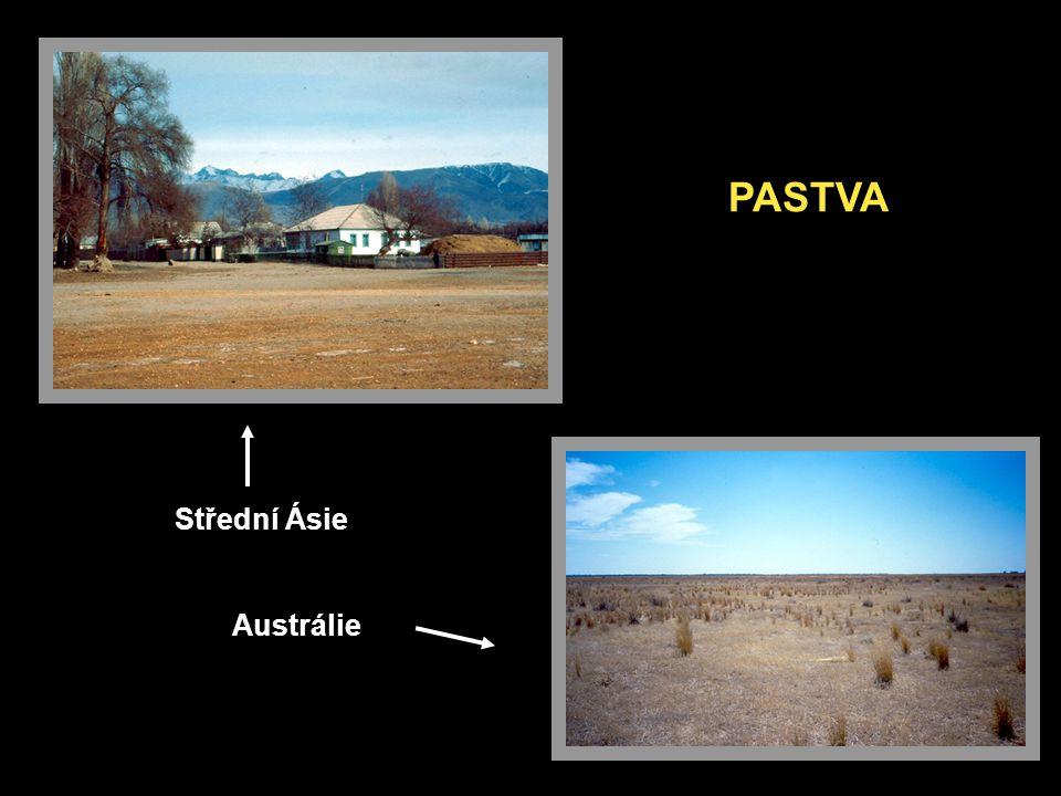 PASTVA Střední Ásie Austrálie
