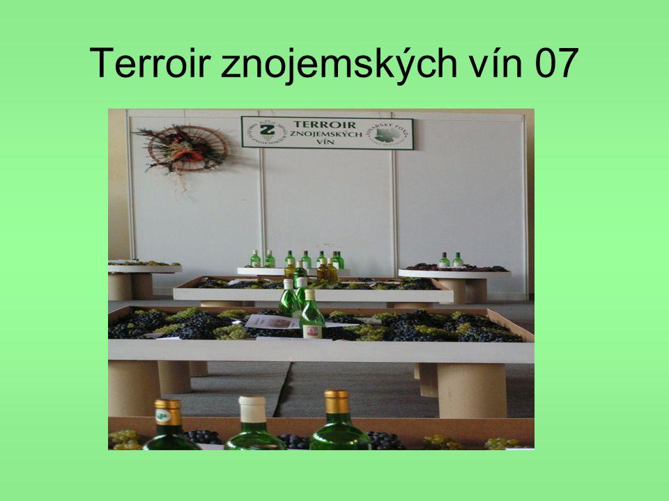 Terroir znojemských vín 07