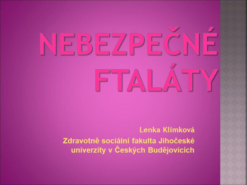Lenka Klimková Zdravotně sociální fakulta Jihočeské univerzity v Českých Budějovicích