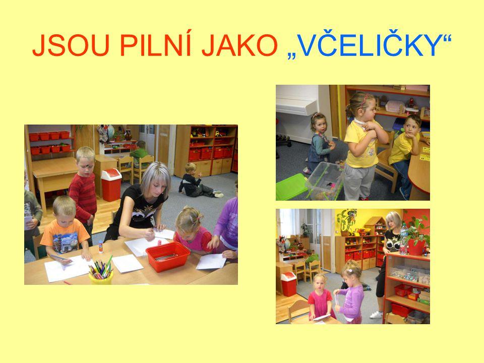 """JSOU PILNÍ JAKO """"VČELIČKY"""
