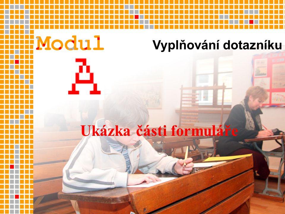 Vyplňování dotazníku Ukázka části formuláře