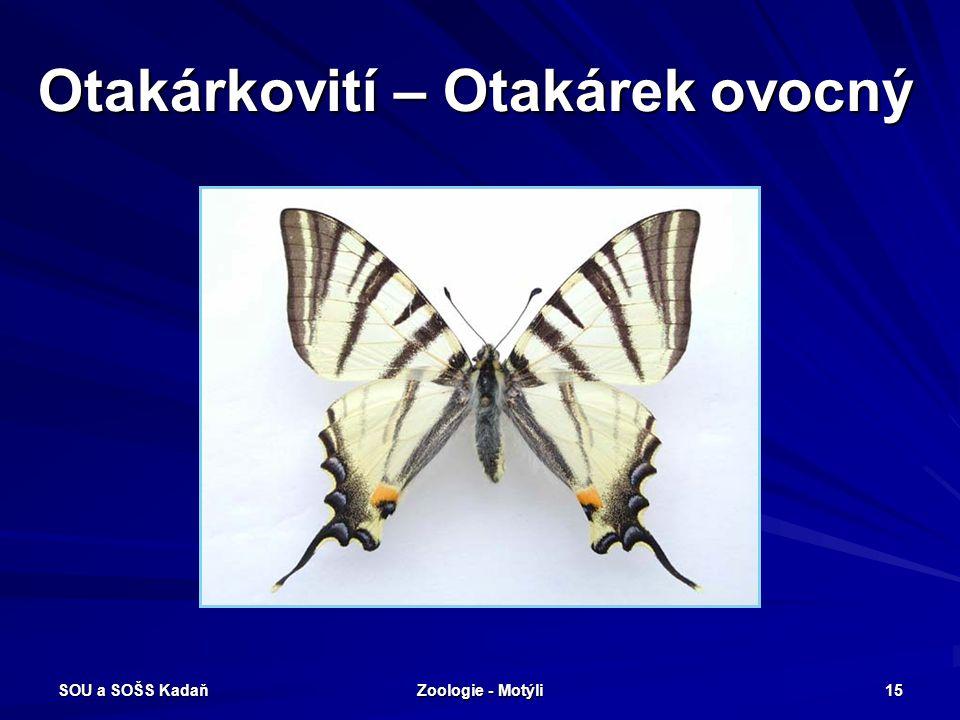 SOU a SOŠS Kadaň Zoologie - Motýli 14 Otakárkovití – Jasoň červenooký