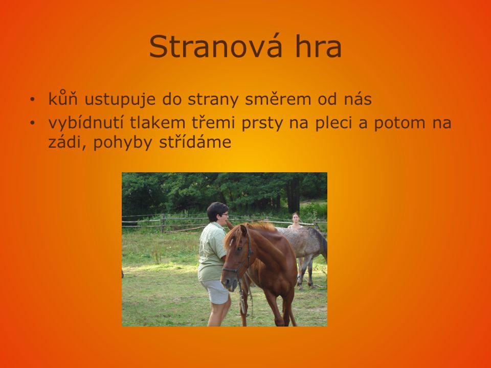 Stranová hra • kůň ustupuje do strany směrem od nás • vybídnutí tlakem třemi prsty na pleci a potom na zádi, pohyby střídáme