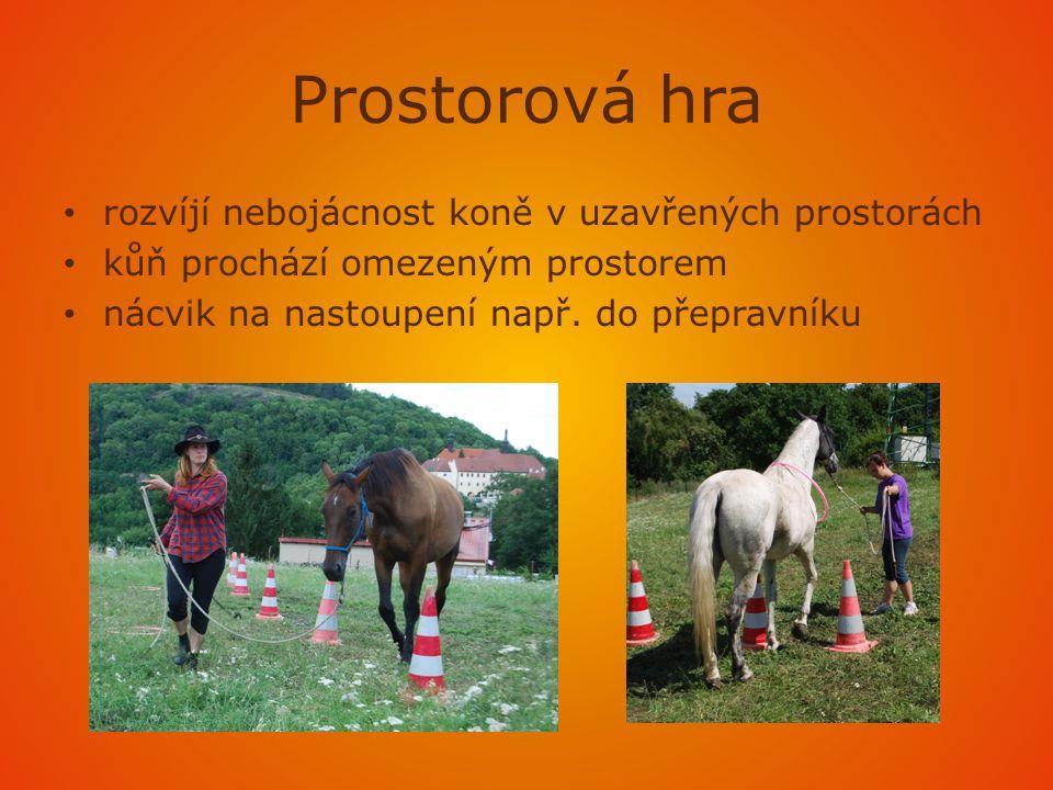 Prostorová hra • rozvíjí nebojácnost koně v uzavřených prostorách • kůň prochází omezeným prostorem • nácvik na nastoupení např.