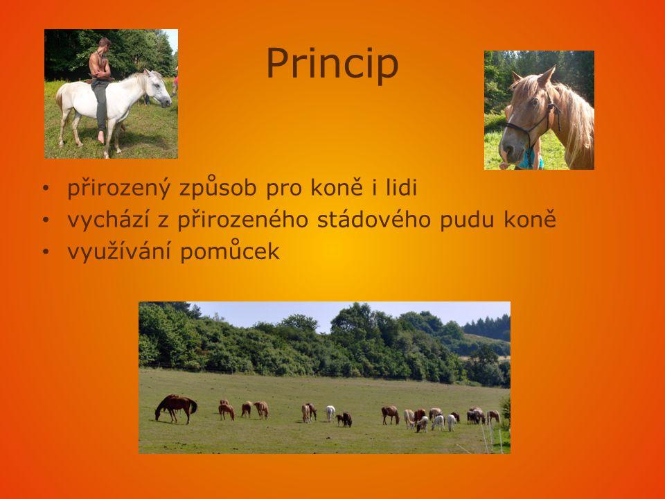 Princip • přirozený způsob pro koně i lidi • vychází z přirozeného stádového pudu koně • využívání pomůcek