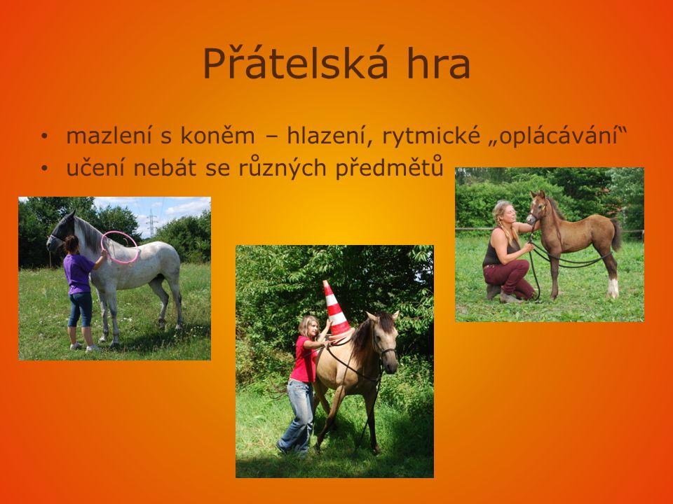 Odkazy • http://www.bezsedla.cz/proc-bez-sedla-/ http://www.bezsedla.cz/proc-bez-sedla-/ • BEDNÁŘ, Frederik.