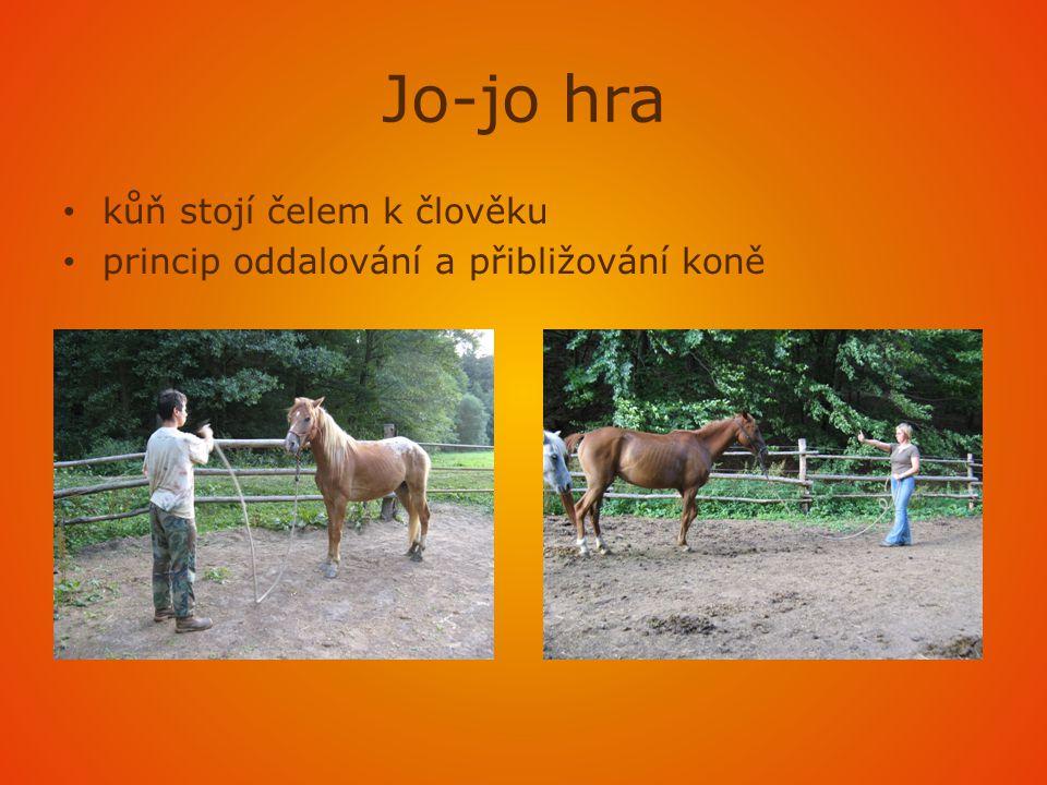 Kruhová hra • podobné lonžování • koně navedeme na kruh – vybídnutím ruky a kůň sám chodí nebo běhá kolem nás