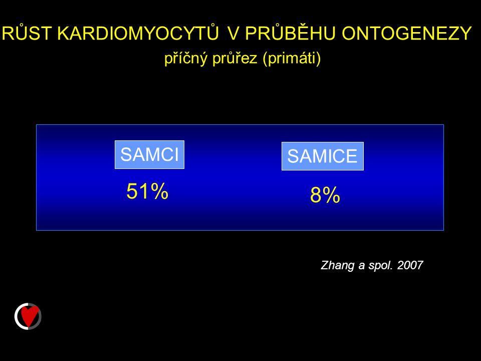 RŮST KARDIOMYOCYTŮ V PRŮBĚHU ONTOGENEZY příčný průřez (primáti) SAMCI SAMICE 51% 8% Zhang a spol.