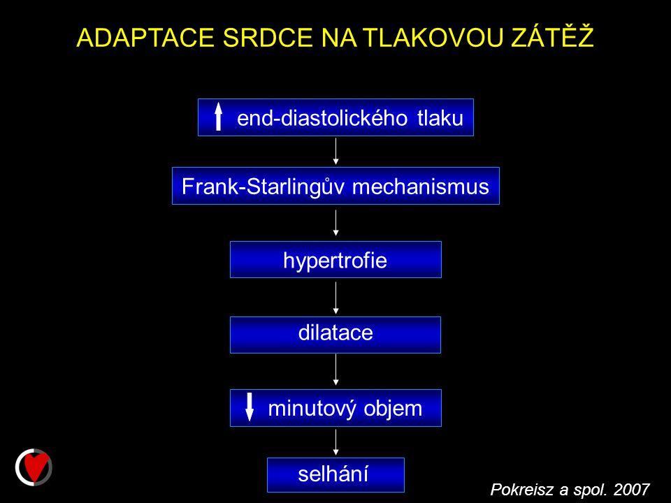ADAPTACE SRDCE NA TLAKOVOU ZÁTĚŽ selhání minutový objem dilatace hypertrofie end-diastolického tlaku Frank-Starlingův mechanismus Pokreisz a spol.