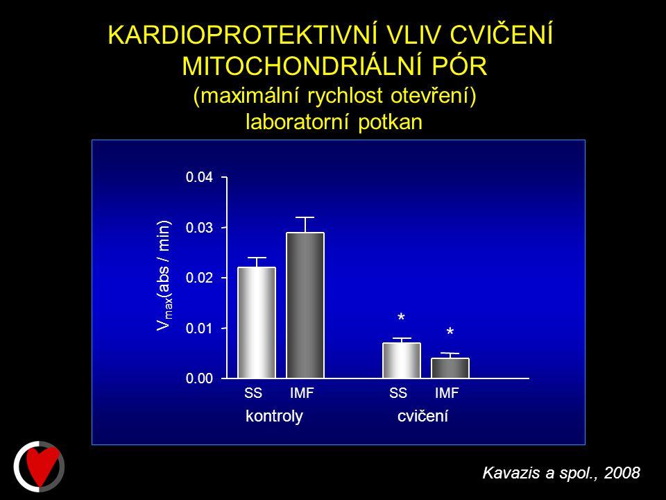 Kavazis a spol., 2008 KARDIOPROTEKTIVNÍ VLIV CVIČENÍ MITOCHONDRIÁLNÍ PÓR (maximální rychlost otevření) laboratorní potkan * V max (abs / min) SSIMFSSIMF 0.00 0.01 0.02 0.03 0.04 * kontrolycvičení