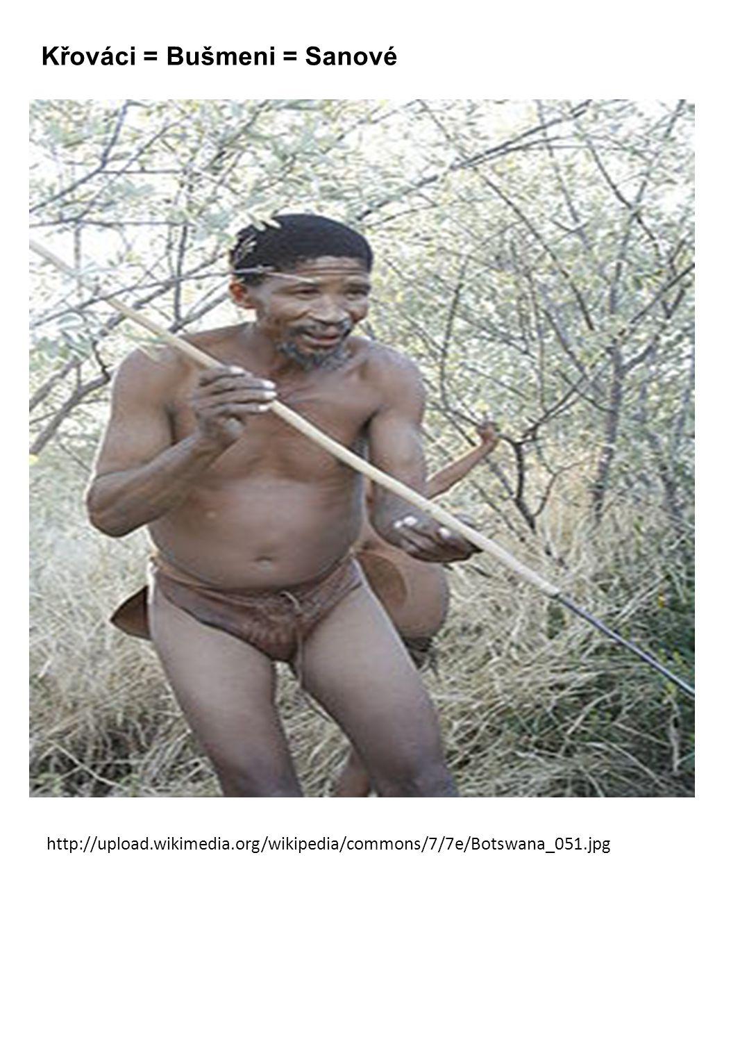 Křováci = Bušmeni = Sanové http://upload.wikimedia.org/wikipedia/commons/7/7e/Botswana_051.jpg