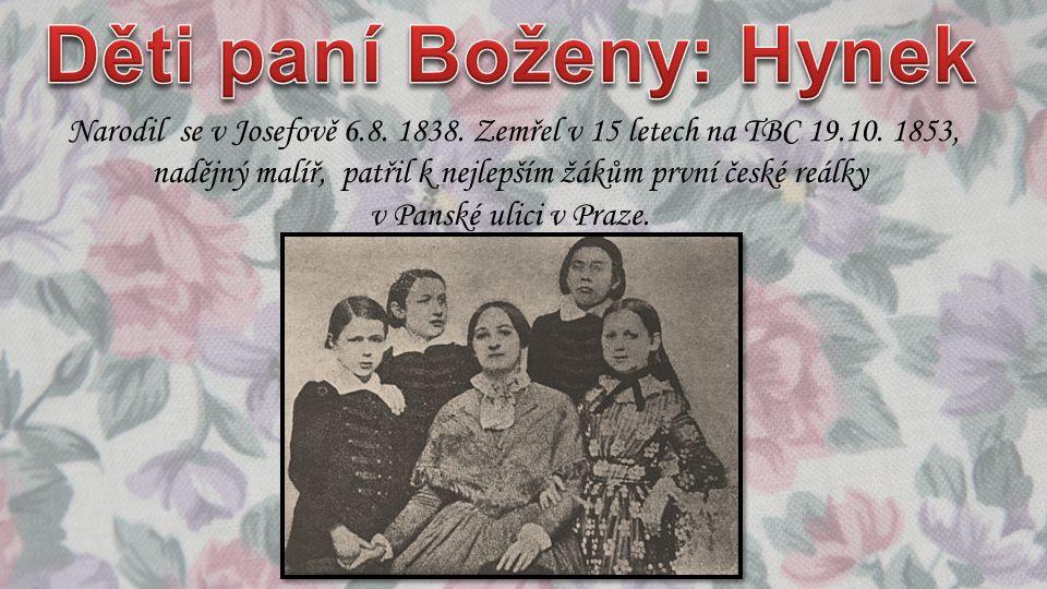 Narodil se v Josefově 6.8. 1838. Zemřel v 15 letech na TBC 19.10. 1853, nadějný malíř, patřil k nejlepším žákům první české reálky v Panské ulici v Pr