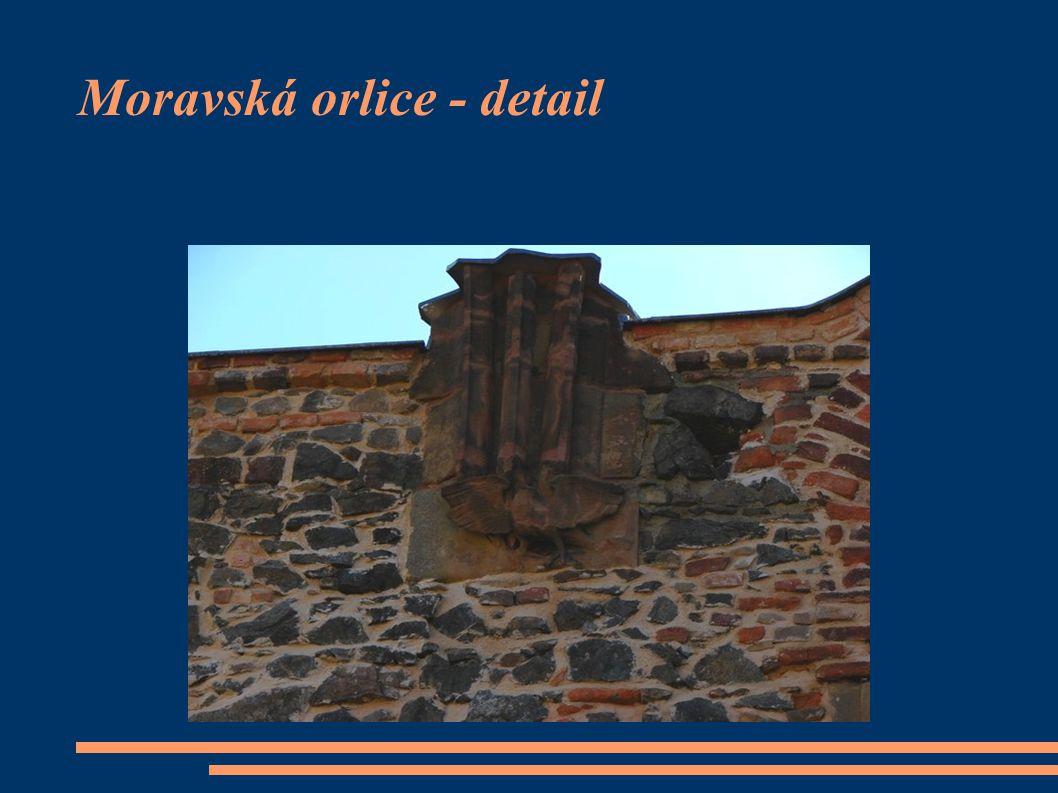 Moravská orlice - detail