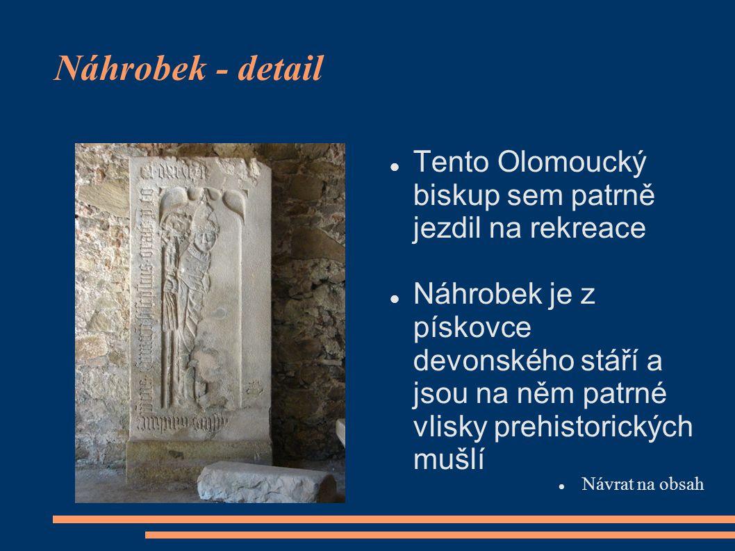 Náhrobek - detail  Tento Olomoucký biskup sem patrně jezdil na rekreace  Náhrobek je z pískovce devonského stáří a jsou na něm patrné vlisky prehist