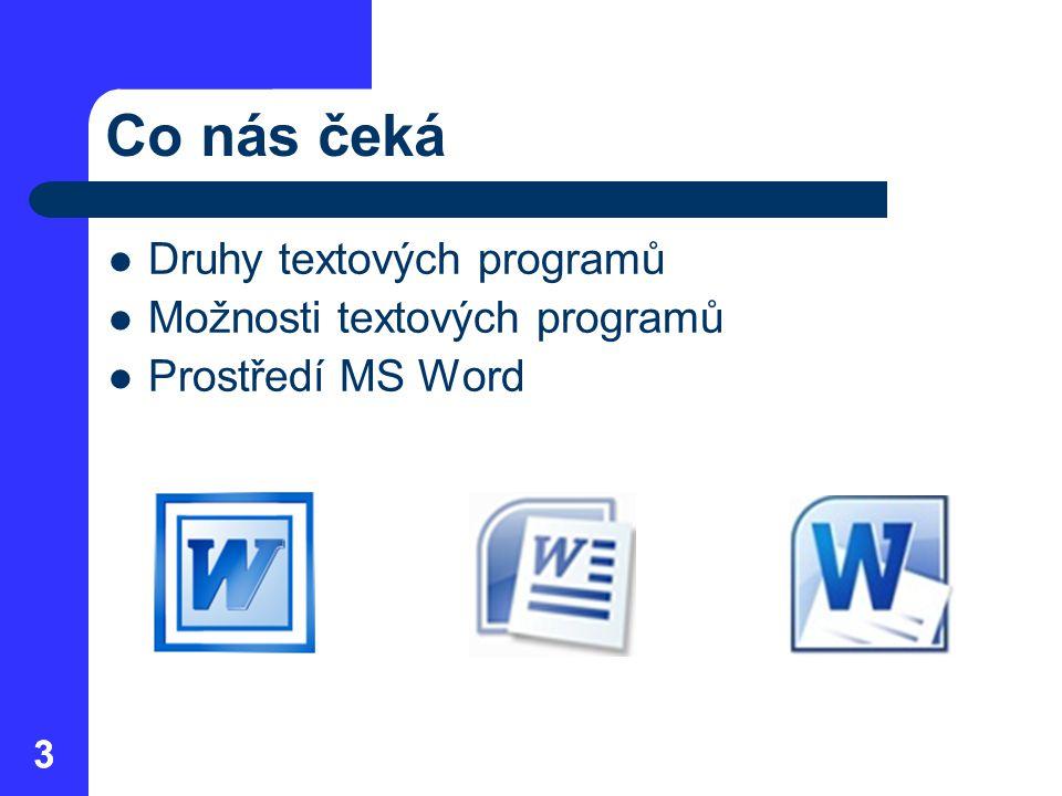 33 Co nás čeká  Druhy textových programů  Možnosti textových programů  Prostředí MS Word
