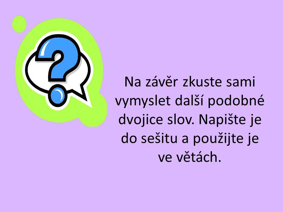 Na závěr zkuste sami vymyslet další podobné dvojice slov. Napište je do sešitu a použijte je ve větách.