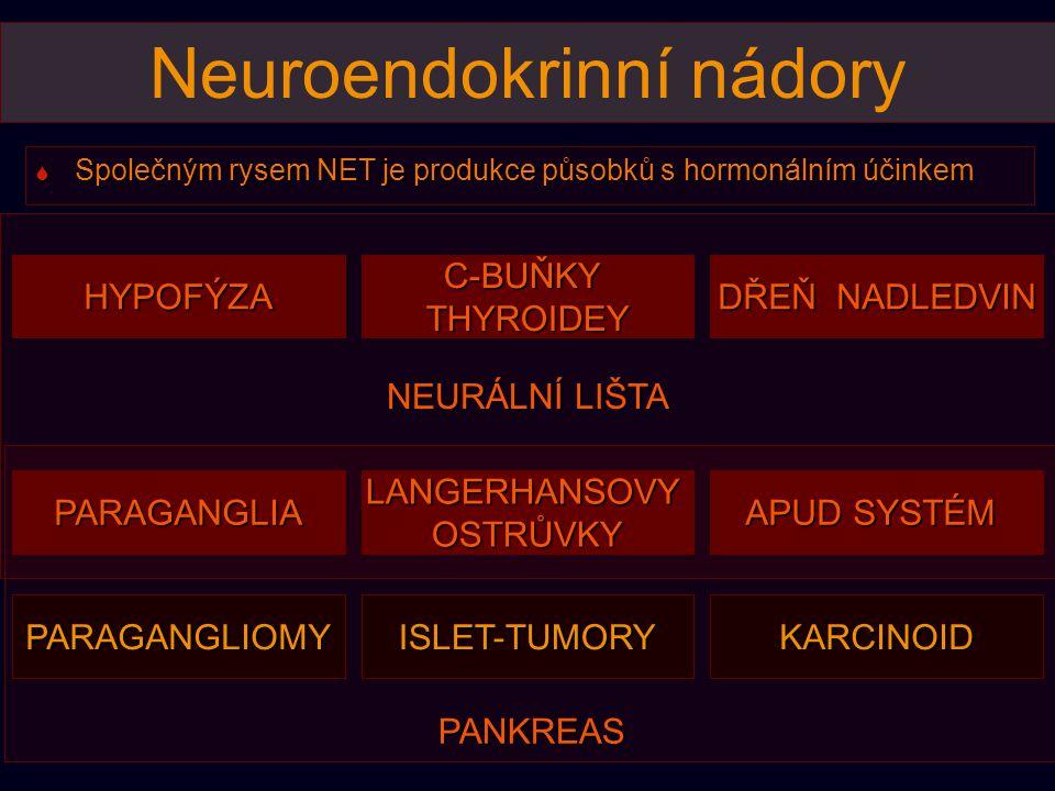 PANKREAS NEURÁLNÍ LIŠTA HYPOFÝZA LANGERHANSOVYOSTRŮVKY APUD SYSTÉM C-BUŇKYTHYROIDEY PARAGANGLIA DŘEŇ NADLEDVIN ISLET-TUMORYKARCINOIDPARAGANGLIOMY Neuroendokrinní nádory  Společným rysem NET je produkce působků s hormonálním účinkem