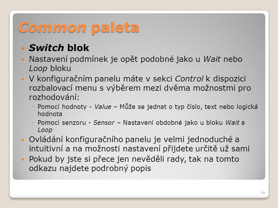 Common paleta  Switch blok  Nastavení podmínek je opět podobné jako u Wait nebo Loop bloku  V konfiguračním panelu máte v sekci Control k dispozici