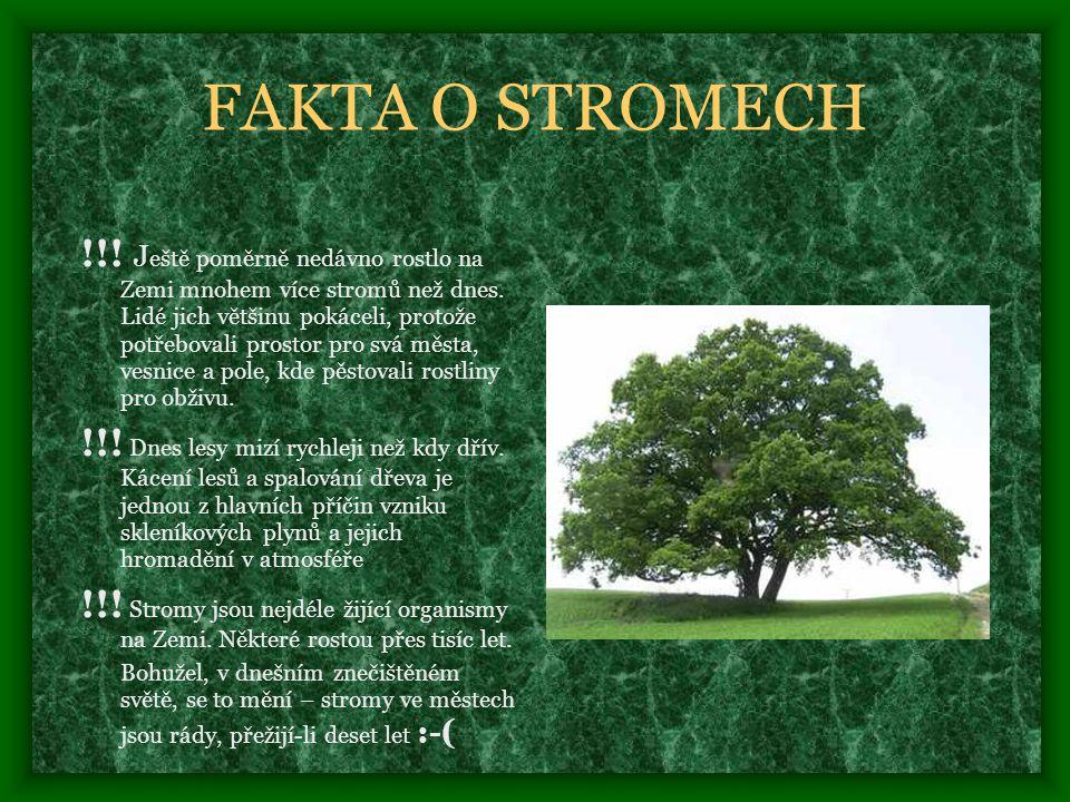 FAKTA O STROMECH !!.J eště poměrně nedávno rostlo na Zemi mnohem více stromů než dnes.
