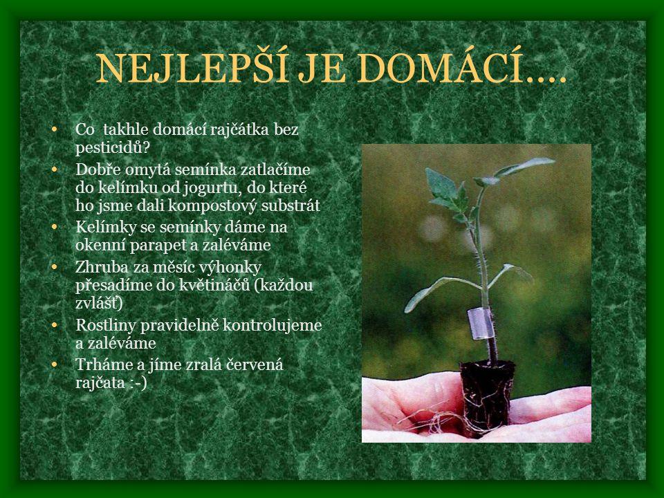 NEJLEPŠÍ JE DOMÁCÍ....• Co takhle domácí rajčátka bez pesticidů.