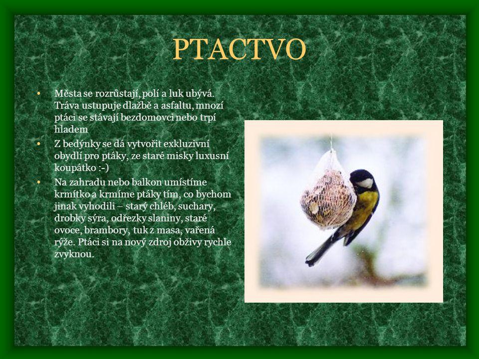 PTACTVO • Města se rozrůstají, polí a luk ubývá.