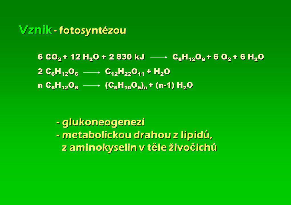 Sacharidy- z latinského saccharum, cukr Uhlohydráty- dříve používaný název vyplývající ze vzorce Cx(H2O)n Koncovka sacharidů-osa (-oza) Charakteristik