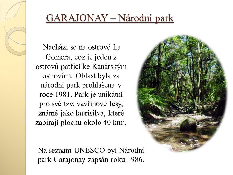 GARAJONAY – Národní park Nachází se na ostrově La Gomera, což je jeden z ostrovů patřící ke Kanárským ostrovům. Oblast byla za národní park prohlášena