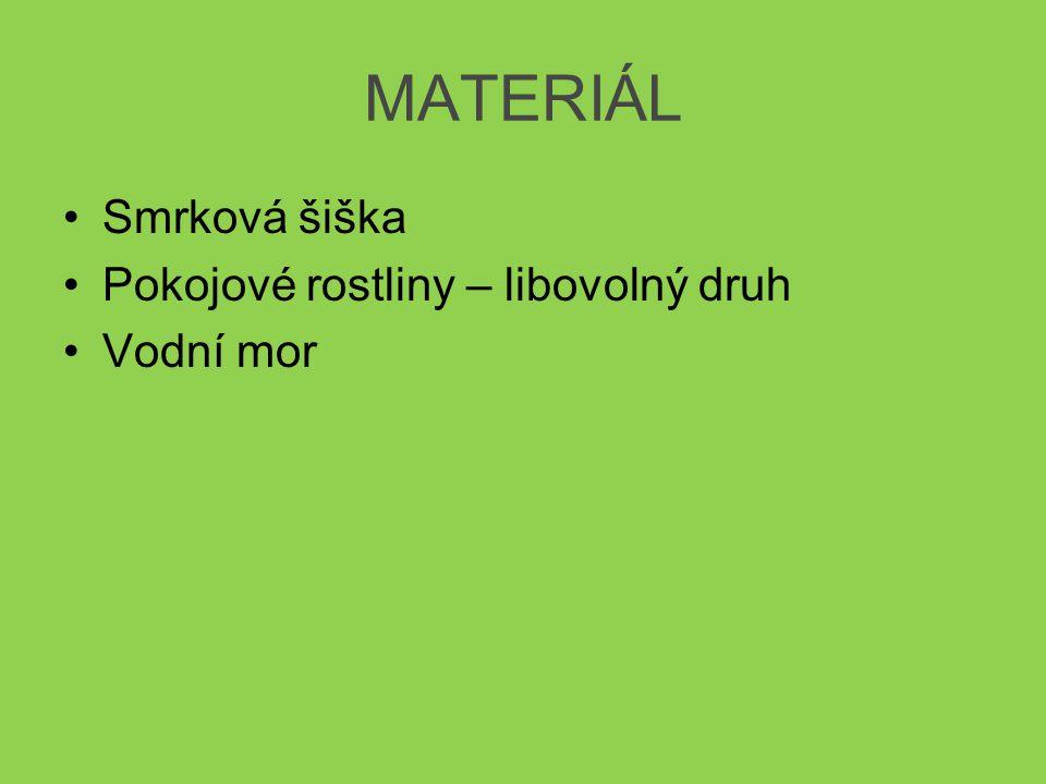 MATERIÁL •Smrková šiška •Pokojové rostliny – libovolný druh •Vodní mor