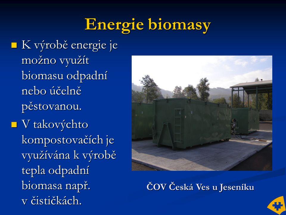 Energie biomasy  K výrobě energie je možno využít biomasu odpadní nebo účelně pěstovanou.