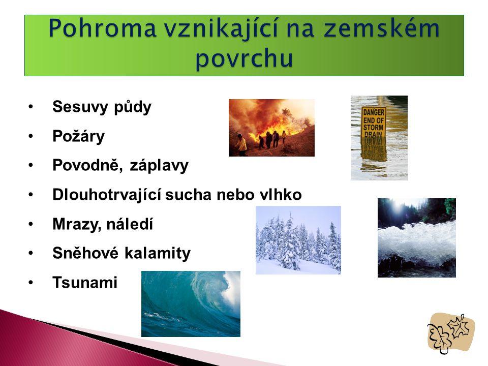 •Sesuvy půdy •Požáry •Povodně, záplavy •Dlouhotrvající sucha nebo vlhko •Mrazy, náledí •Sněhové kalamity •Tsunami