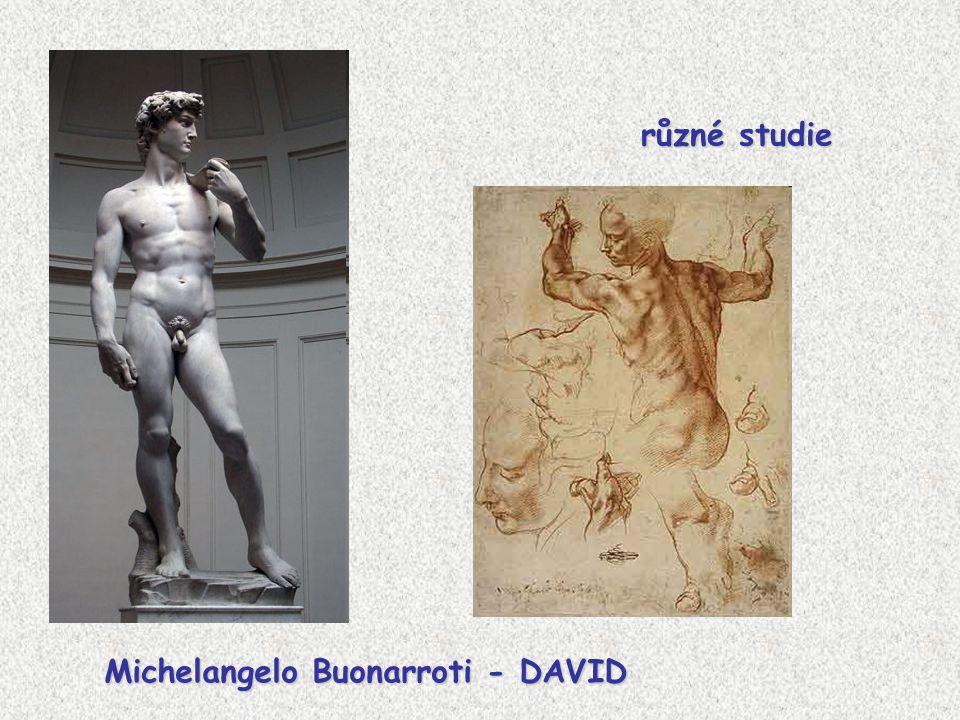 Michelangelo Buonarroti - DAVID různé studie