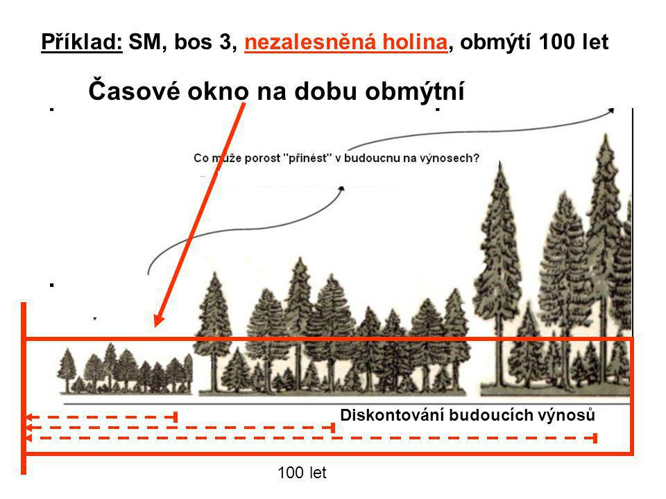 Časové okno na dobu obmýtní 100 let Diskontování budoucích výnosů Příklad: SM, bos 3, nezalesněná holina, obmýtí 100 let
