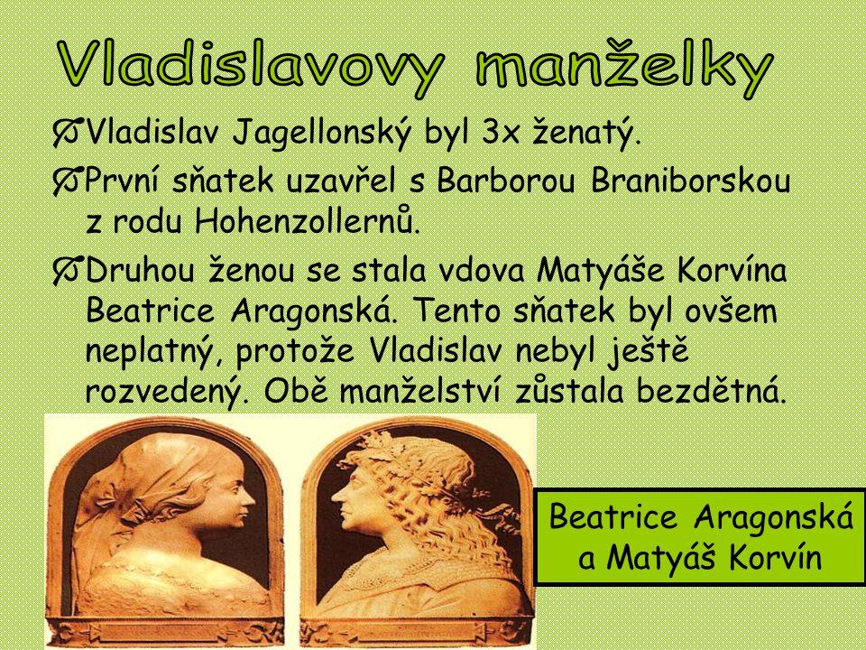  Vladislav Jagellonský byl 3x ženatý.  První sňatek uzavřel s Barborou Braniborskou z rodu Hohenzollernů.  Druhou ženou se stala vdova Matyáše Korv