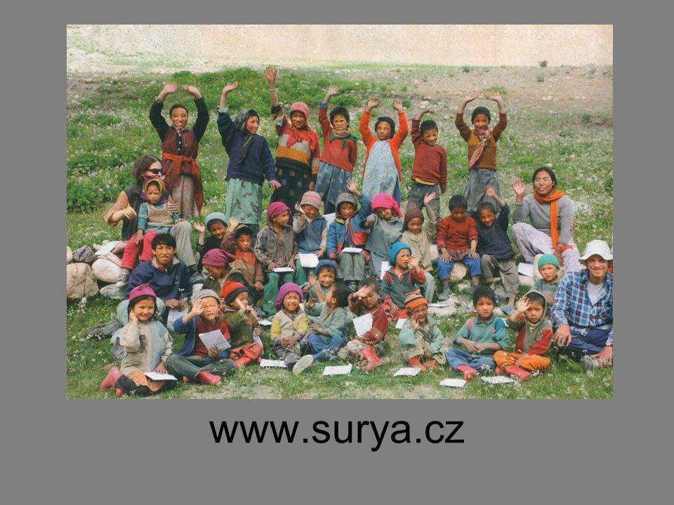 www.surya.cz